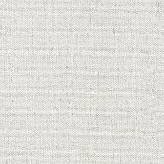 仿編織粗布紋_淺灰棉(15053)