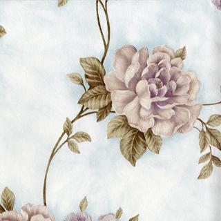 洛陽牡丹_粉紫花朵(SP145702)