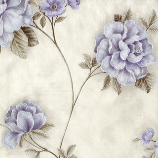 洛陽牡丹_紫色花朵(SP145704)