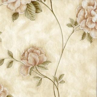 洛陽牡丹_粉紅花朵(SP145701)