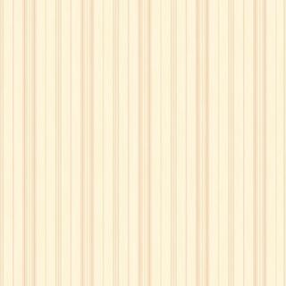 細緻線條_俏皮橘(NA5804)