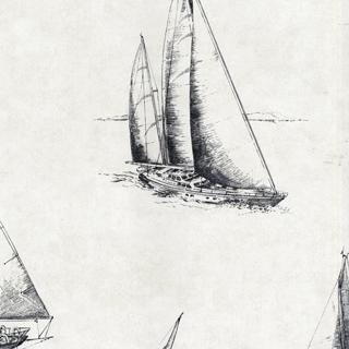 摩登紳士(2604-21202)
