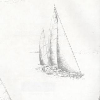 摩登紳士(2604-21203)