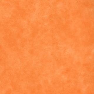 旋轉木馬(2615-31179)