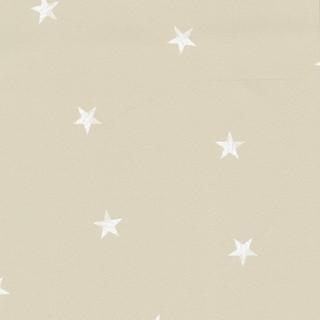 旋轉木馬(2615-21108)