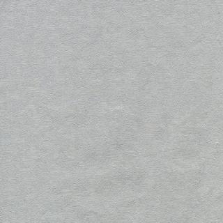 101(791108)