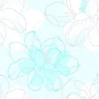 愛麗絲2(B10102)