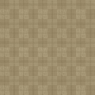 幻夢童謠(FQD8T1202)