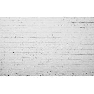 無縫壁畫(WBH1315B)