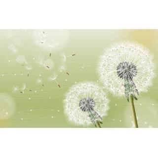 花彩印象系列(64-2-WBH0722)