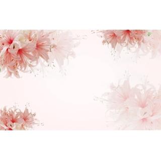 花彩印象系列(60-3-WBH0736)