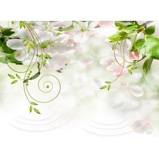 花彩印象系列(68-3-WBH0742)