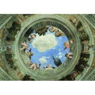 天花板牆系列(178-1-FWY3V1019)
