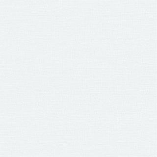 摩天輪(F93712)
