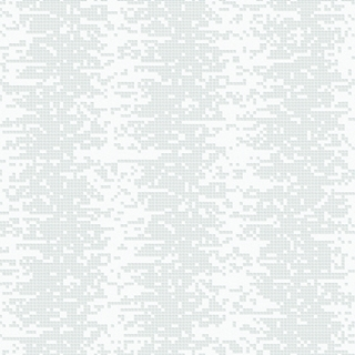 摩天輪(F93182)