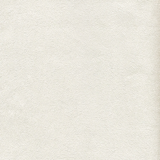 歐樺(65801)