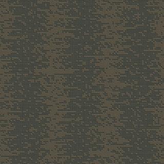 摩天輪(F93665)