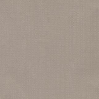 歐樺(89154)
