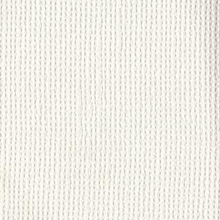 歐樺(82001)