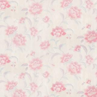 歐樺(34003)