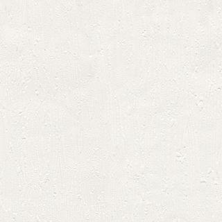 歐樺(19870)
