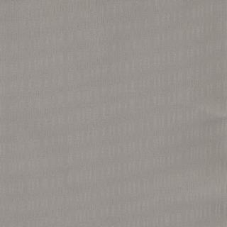 歐樺(89155)
