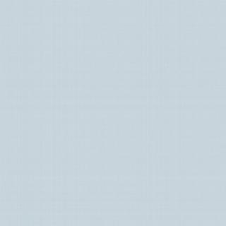 摩天輪(F93114)