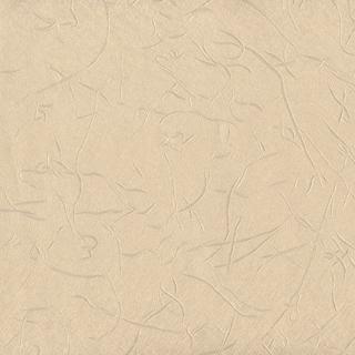 歐樺(89323)