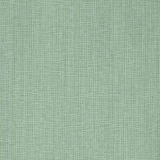 美素(CL0164)