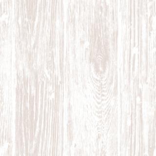 美素(CL0100)